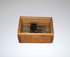 C4 - A wooden box of glass microscope slides belonging to Pío del Río-Hortega